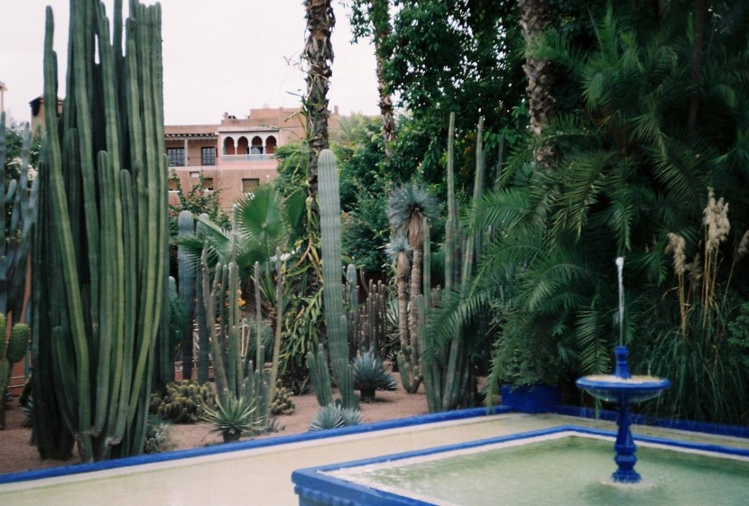 revistajaleo_marrakech1